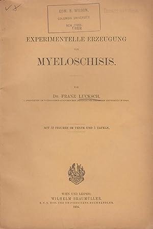 Experimentelle Erzeugung von Myeloschisis: Lucksch, Franz