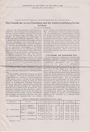 Die Genetik des incana Charakters und der Anthozyanbildung bei der Levkoje: Kappert, H.