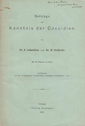 Beitrag zur Kenntnis der Coccidien: Schaudinn, F.; Siedlecki, M.
