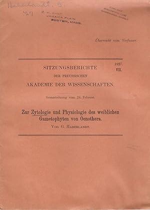 Zur Zytologie und Physiologie des weiblichen Gametophyten von Oenothera: Haberlandt, G.