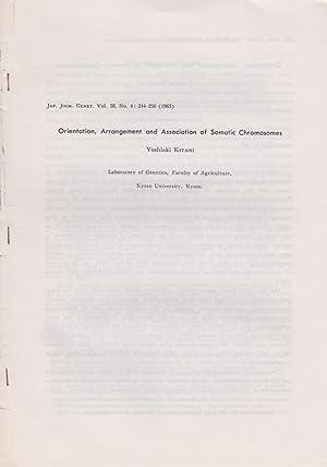 Orientation, Arrangement and Association of Somatic Chromosomes: Kitani, Yoshiaki