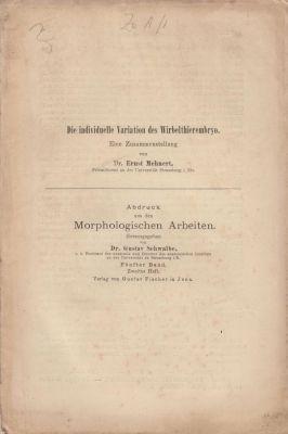 Die individuelle Variation des Wirbelthierembryo: Mehnert, Ernst