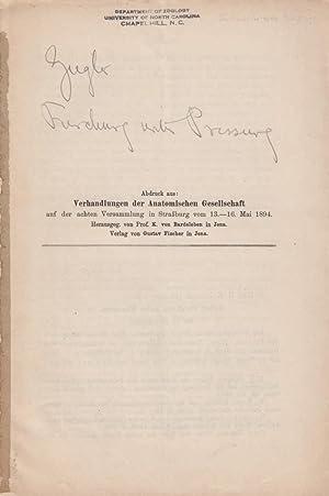 Ueber Furchung unter Pressung: Ziegler, Heinrich Ernst