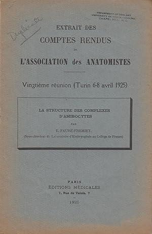 La Structure des Complexes D'Amibocytes: Faure-Fremiet, E.