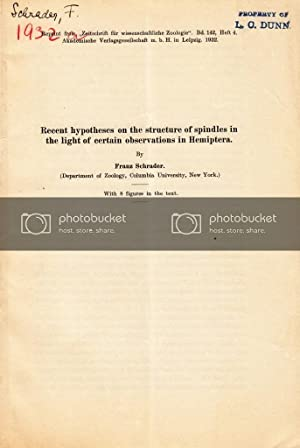 Recent Hypotheses on the Structure of Spindles in the Light of Certain Observations in Hemiptera: ...
