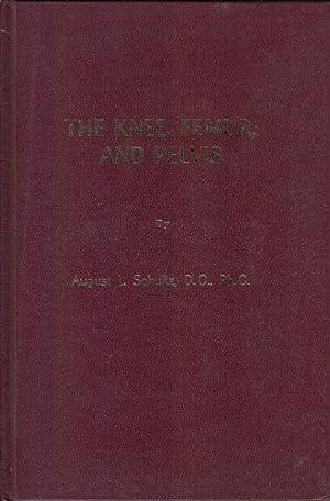The Knee, Femur, and Pelvis: Schultz, August