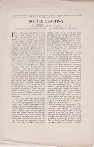 Bottle Grafting: Blakeslee, A.F.; Farnham, M.E.