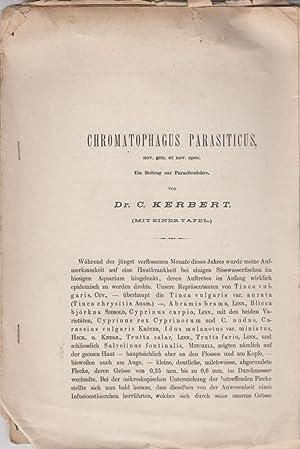 Chromatophagus Parasiticus, nov. gen. et nov. spec.: Kerbert, C.