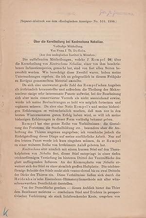 Uber die Kerntheilung bei Kentrochona Nebaliae: Doflein, Franz J. Th.