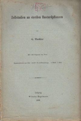 Zellstudien an sterilen Bastardpflanzen: Tischler, G.