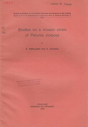 Studies on a Mosaic Strain of Petunia Violacea: Malinowski, E.; Smolska, A.