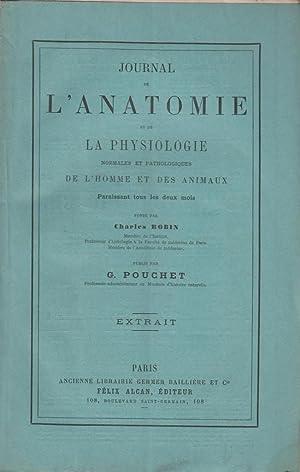 Contribution a L'Histoire des Noctiluques: Pouchet, Georges