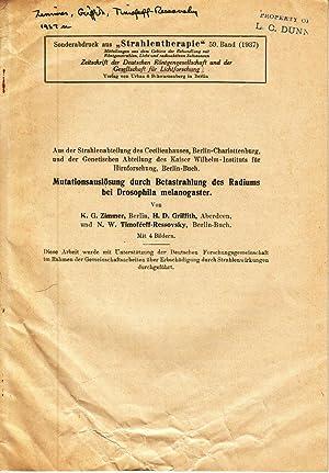 Mutationsauslosung durch Betastrahlung des Radiums bei Drosophila melanogaster: Zimmer, K.G.; ...