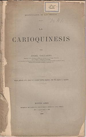 La Carioquinesis: Gallardo, Angel
