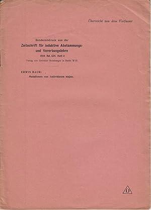 Mutationen von Antirrhinum majus: Baur, Erwin