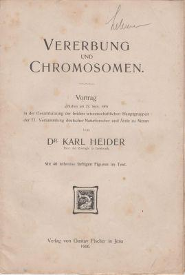 Vererbung und Chromosomen: Heider, Karl