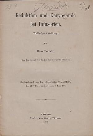 Reduktion und Karyogamie bei Infusorien: Prandtl, Hans