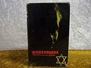 Im Feuer vergangen : Tagebücher aus dem: Mika, Viktor