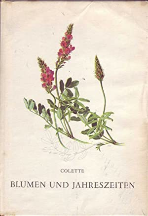 Blumen und Jahreszeiten: Colette