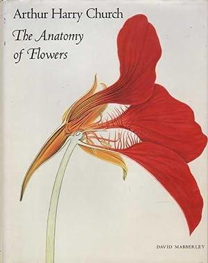 Arthur Harry Church: The Anatomy of Flowers: Mabberley & Church, David / Arthur Harry