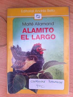 Alamito el Largo: Maite Allamand