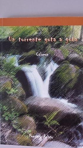UN TORRENTE GOTA A GOTA. Poesía y: Ignacio del Dedo