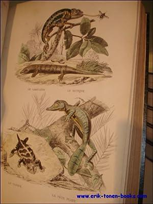 Histoire Naturelle de Lacepede: Comprenant Les Cetacees, Les Quadrupedes Ovipares, Les Serpents Et ...
