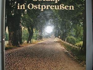 GOLDAP IN OSTPREUSSEN Stadt und Landkreis [Verfaßt: Toffert, Hans Erich: