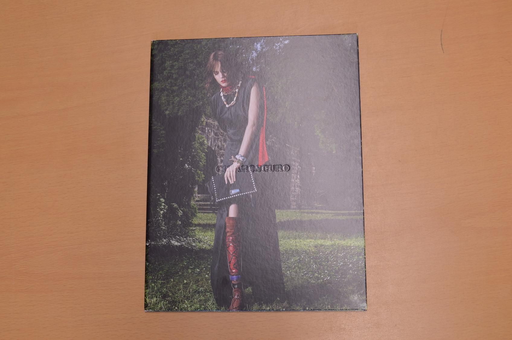 Prada Catalogue: Viewfinder, Auteur, Chiaroscuro, Dialogue, Persona, Piece de Chambre, Denouement Prada Very Good Softcover Prada: 2017. 7 x Prada Catalogues. Bound in pictoral hardcover with softcover catalogue inside incl. large poster all in very good + condition.Interna