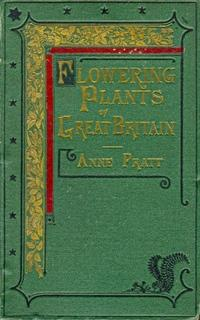 The Flowering Plants, Grasses, Sedges, and Ferns of Great Britain. Volume IV [of 6]
