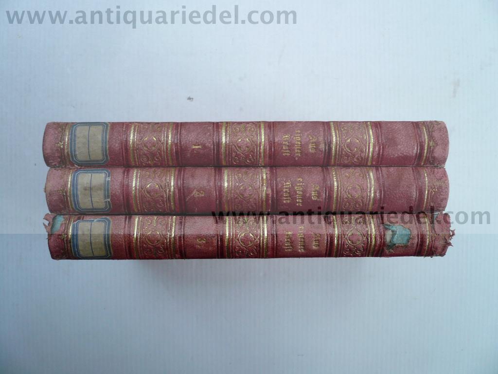 Aus eigener Kraft, Roman, 1872, Bibliothek Königin Marie Therese