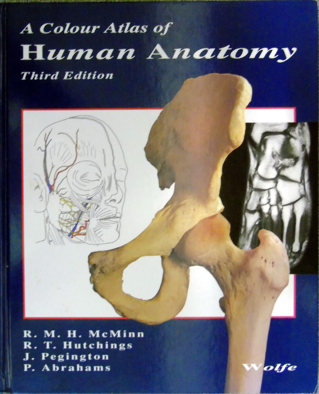 Color Atlas Human Anatomy Abebooks