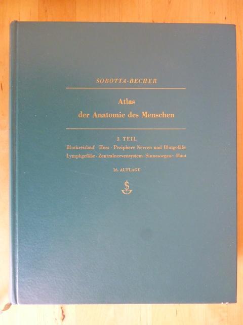 atlas der anatomie des von johannes sobotta - ZVAB