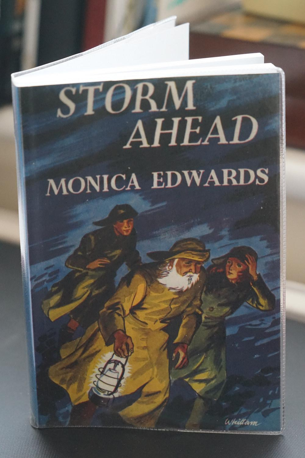 Storm Ahead Monica Edwards New Softcover