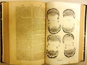 Dictionnaire d'Hippiatrique et d'Équitation, Ouvrage ou se trouvent réunies...