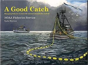 A Good Catch: Morrison, Taylor