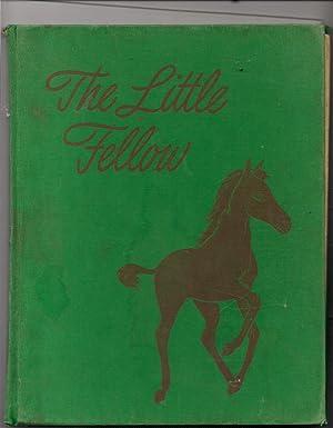 The Little Fellow: Henry, Marguerite-illustrator Diana