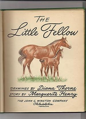 The Little Fellow: Henry, Marguerite-illustrator Diana Thorne