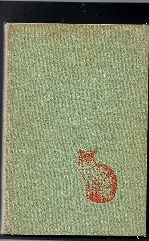 Cat Hotel: Johnson, Siddie Joe