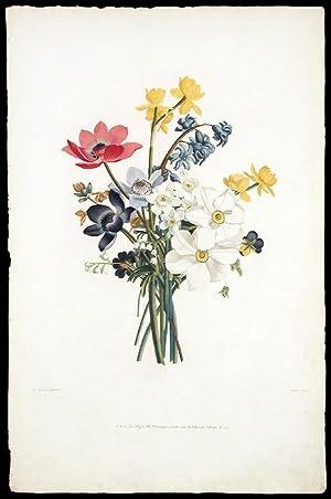 Bouquet de Jacinte, Narcises divers, Anemones, Pensees,: PREVOST, Jean Louis