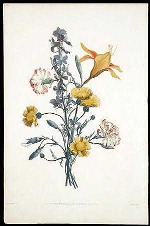 Bouquet d'Oeillet, Ambrette, Daufinel, et Emerocalle: PREVOST, Jean Louis