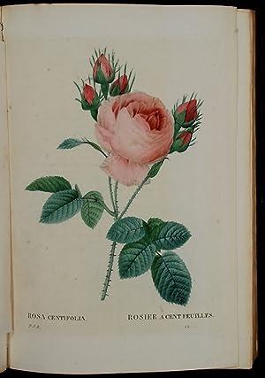 Les Roses, peintes par. Redouté.décrites et classes: REDOUTÉ, Pierre-Joseph (1759-1840)