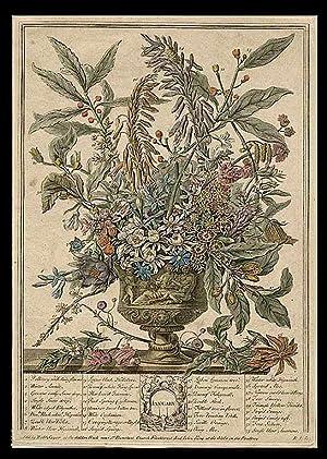 January: FURBER, Robert (circa 1674-1756, publisher) - After Pieter CASTEELS (1684-1749)