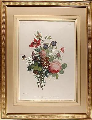 Bouquet de Roses, Anémones, Pensées, Nêles, Auricules,: PREVOST, Jean Louis