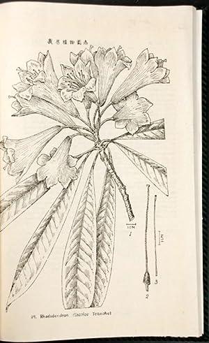 Emei zhi wu tu zhi Icones plantarum: CHINA, Mount Emei,