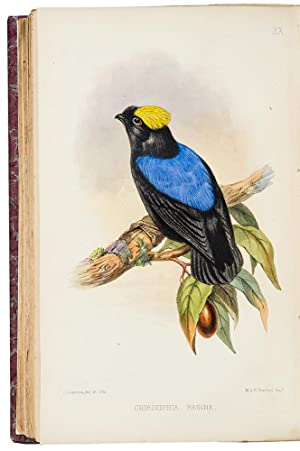 Catalogue of a collection of American Birds: SCLATER, Philip Lutley