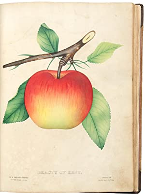 The Nurseryman's Specimen Book of American Fruits, Flowers, Ornamental Trees, Shrubs, Roses &c. R...
