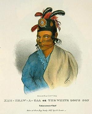 The Aboriginal Portfolio]: LEWIS, James Otto