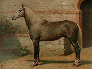 Het Algiersche Paard [Algerian Horse]: EERELMAN, Otto (1839-1926)
