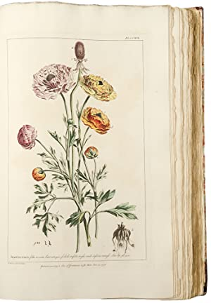 Figures of the Most Beautiful, Useful and Uncommon Plants Described in the Gardeners Dictionary e...